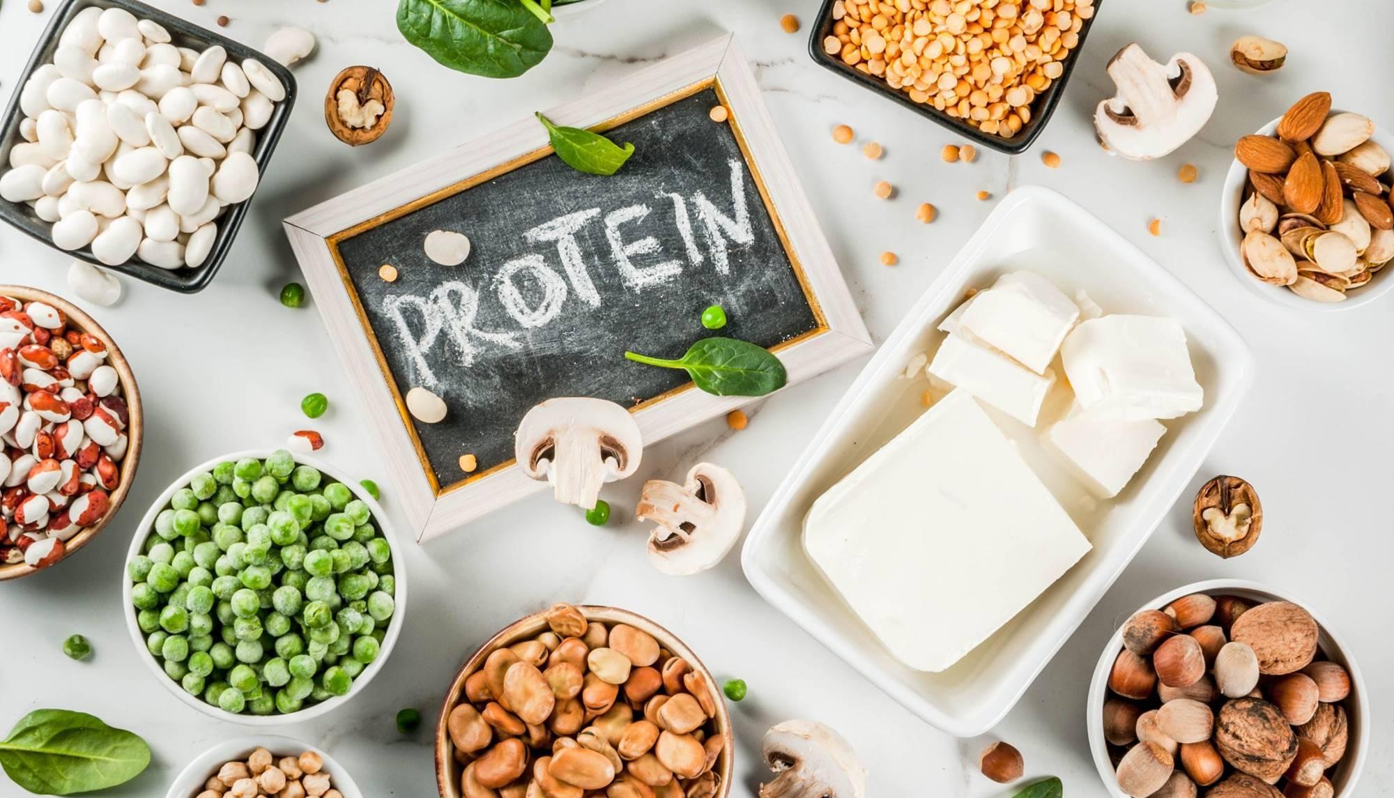 biljni-proteini-razlike-u-odnosu-na-ivotinjske-i-n_5d492f03ae36d